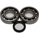 ALL BALLS CRANKSHAFT BEARING AND SEAL KITS